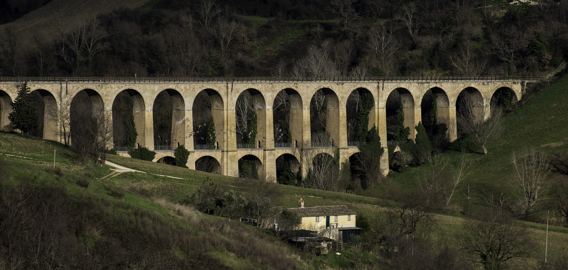Bridges in Marche